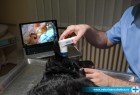 Video otoskopija